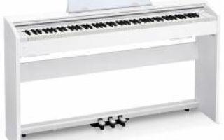 Casio – надежные инструменты по привлекательным ценам