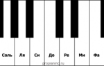 Обучение детей игре на фортепиано: что делать на первых уроках?
