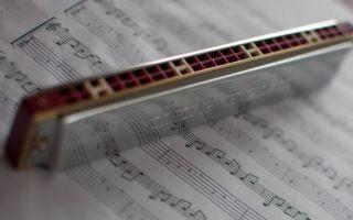 Самостоятельное обучение игре на гармошке