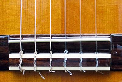 Чем отличается обычная гитара от электрогитары