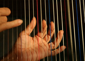 А вы знаете, из чего делают струны?